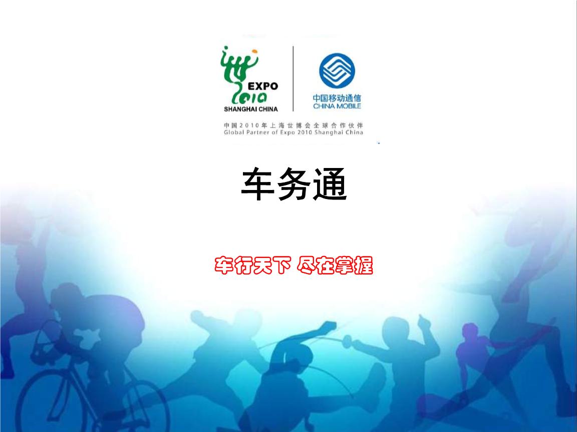 金凤区综合执法局车务通监控平台集成服务